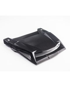 Agency Power Carbon Fiber Hood Scoop Polaris RZR XP 1000 | Turbo